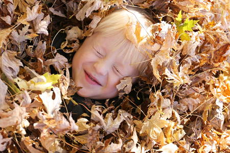 peaking: A cute and happy young child is laying in a large pile of fall Maple leaves, with only his face peaking out.