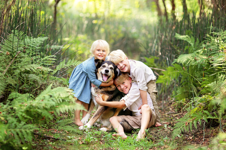 Three happy little children are lovingly hugging their adopted pet senior dog, outside in a fern forest on a summer day. Stockfoto