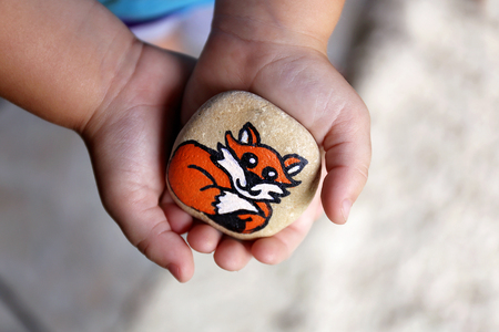A little 3 year old toddler childs hands are gently holding a painted rock with a fox on it, that they will hide in the garden. 写真素材