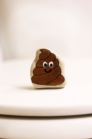 A rock is painted like a poop with a smiling face is sitting on a closed toilet in a bathroom.