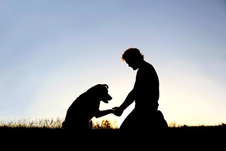 Un joven está sentado afuera entrenando a su perro y dándole la mano en una tarde de verano, recortada por la puesta de sol en el cielo. Foto de archivo