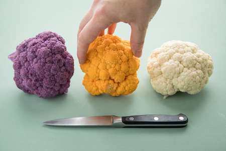 Woman cooking colorful rainbow cauliflower in purple, orange and white in row with knife on pastel green background