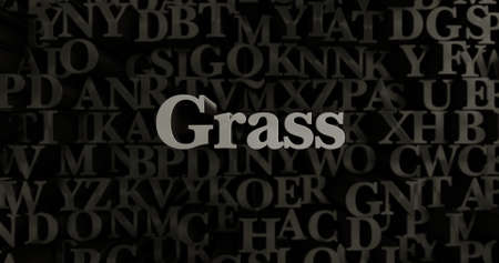 silver grass: Grass - 3D rendered metallic typeset headline illustration.  Can be used for an online banner ad or a print postcard. Stock Photo