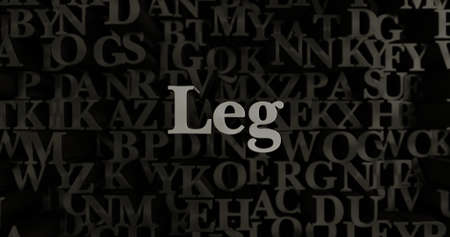 Leg - 3D rendered metallic typeset headline illustration.  Can be used for an online banner ad or a print postcard.