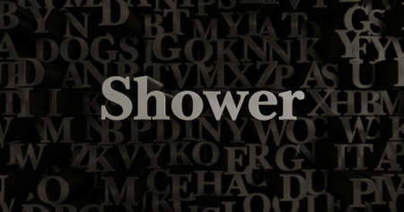 single word: Shower - 3D rendered metallic typeset headline illustration.  Can be used for an online banner ad or a print postcard.