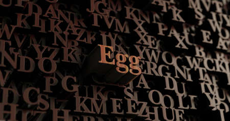 Egg - Wooden 3D rendered lettersmessage.  Can be used for an online banner ad or a print postcard. Stock Photo