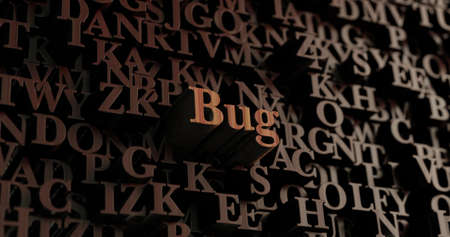 Bug - Wooden 3D rendered lettersmessage.  Can be used for an online banner ad or a print postcard.
