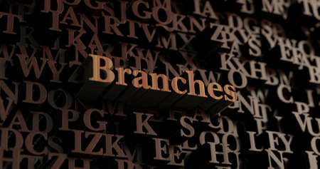 Branches - Wooden 3D rendered lettersmessage.  Can be used for an online banner ad or a print postcard.