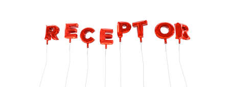 receptor: RECEPTOR - word made from red foil balloons - 3D rendered.  Can be used for an online banner ad or a print postcard.