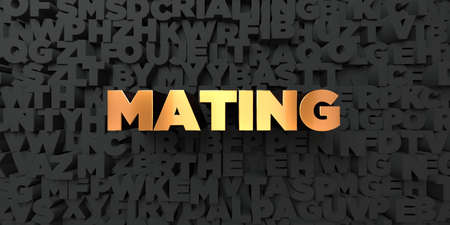 mating: Mating - Gold text on black background - 3D rendered royalty free stock picture. This image can be used for an online website banner ad or a print postcard.