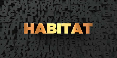 habitat: Habitat - Gold text on black background - 3D rendered royalty free stock picture. This image can be used for an online website banner ad or a print postcard.