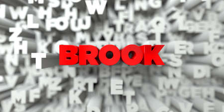 brook: BROOK -  Red text on typography background - 3D rendered royalty free stock image. This image can be used for an online website banner ad or a print postcard.