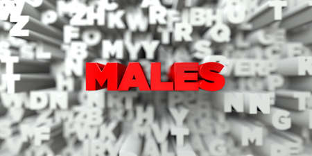 royalty: MALES -  Red text on typography background - 3D rendered royalty free stock image. This image can be used for an online website banner ad or a print postcard.
