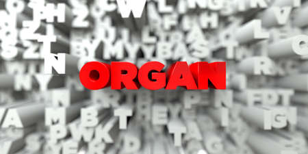 stock image: ORGAN -  Red text on typography background - 3D rendered royalty free stock image. This image can be used for an online website banner ad or a print postcard.