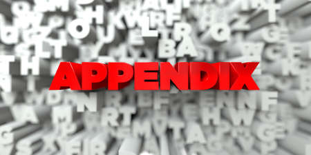 APPENDIX -  Red text on typography background - 3D rendered royalty free stock image. This image can be used for an online website banner ad or a print postcard.