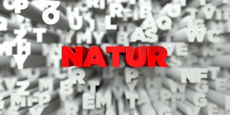 NATUR -  Red text on typography background - 3D rendered royalty free stock image. This image can be used for an online website banner ad or a print postcard. Stock Photo