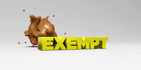 exempt: EXEMPT -  color type on white studiobackground with design element - 3D rendered royalty free stock picture. This image can be used for an online website banner ad or a print postcard. Stock Photo