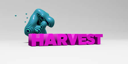 HARVEST -  color type on white studiobackground with design element - 3D rendered royalty free stock picture. This image can be used for an online website banner ad or a print postcard.