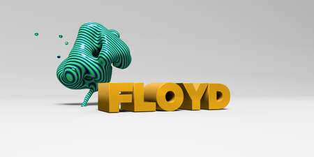 FLOYD -  color type on white studiobackground with design element - 3D rendered royalty free stock picture. This image can be used for an online website banner ad or a print postcard. Stock Photo