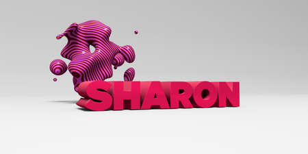 SHARON -  color type on white studiobackground with design element - 3D rendered royalty free stock picture. This image can be used for an online website banner ad or a print postcard.