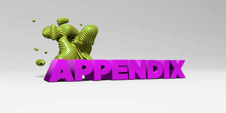 APPENDIX -  color type on white studiobackground with design element - 3D rendered royalty free stock picture. This image can be used for an online website banner ad or a print postcard. Stock Photo