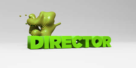 DIRECTOR -  color type on white studiobackground with design element - 3D rendered royalty free stock picture. This image can be used for an online website banner ad or a print postcard.