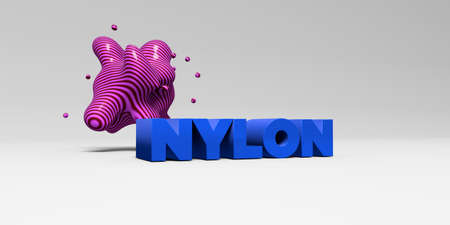 NYLON -  color type on white studiobackground with design element - 3D rendered royalty free stock picture. This image can be used for an online website banner ad or a print postcard.