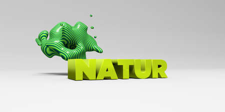 NATUR -  color type on white studiobackground with design element - 3D rendered royalty free stock picture. This image can be used for an online website banner ad or a print postcard.