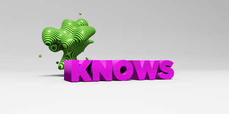 knows: KNOWS -  color type on white studiobackground with design element - 3D rendered royalty free stock picture. This image can be used for an online website banner ad or a print postcard.