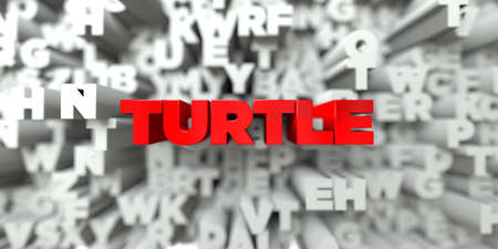 TURTLE -  Red text on typography background - 3D rendered royalty free stock image. This image can be used for an online website banner ad or a print postcard.