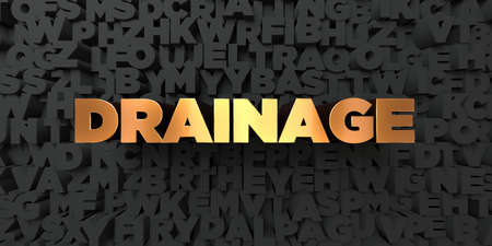 drainage: Drainage - Gold text on black background - 3D rendered royalty free stock picture. This image can be used for an online website banner ad or a print postcard.