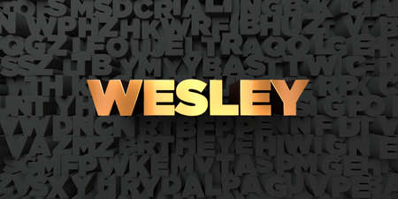 wesley: Wesley - Gold text on black background - 3D rendered royalty free stock picture. This image can be used for an online website banner ad or a print postcard.