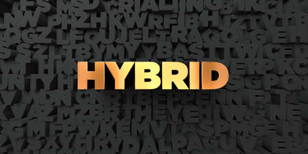 hybrid: Hybrid - Gold text on black background - 3D rendered royalty free stock picture. This image can be used for an online website banner ad or a print postcard.