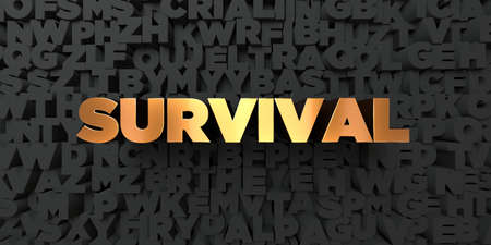 survival: Survival - Gold text on black background - 3D rendered royalty free stock picture. This image can be used for an online website banner ad or a print postcard. Stock Photo