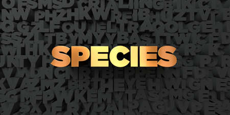 species: Species - Gold text on black background - 3D rendered royalty free stock picture. This image can be used for an online website banner ad or a print postcard.
