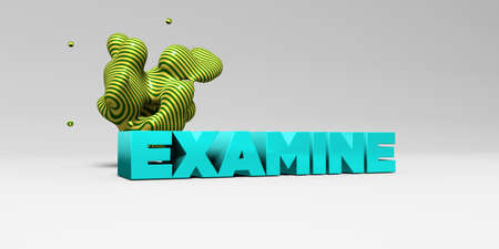 examine: EXAMINE - 3D rendered colorful headline illustration.  Can be used for an online banner ad or a print postcard.