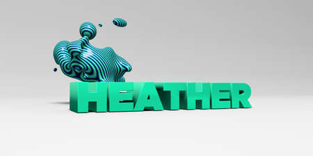 heather: HEATHER - 3D rendered colorful headline illustration.  Can be used for an online banner ad or a print postcard. Stock Photo