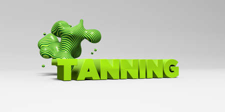 tanning: TANNING - 3D rendered colorful headline illustration.  Can be used for an online banner ad or a print postcard.