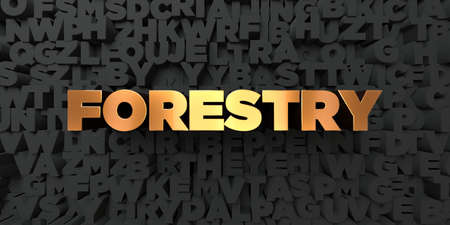 Forestry - Gold text on black background - 3D rendered royalty free stock picture. This image can be used for an online website banner ad or a print postcard. Reklamní fotografie
