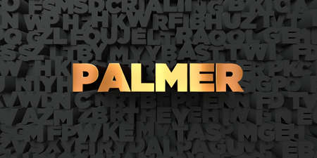 palmer: Palmer - Gold text on black background - 3D rendered royalty free stock picture. This image can be used for an online website banner ad or a print postcard.