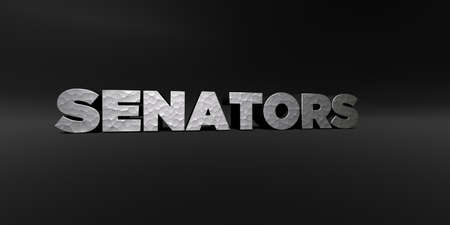 senators: SENATORS - hammered metal finish text on black studio - 3D rendered royalty free stock photo. This image can be used for an online website banner ad or a print postcard. Stock Photo