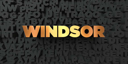 windsor: Windsor - Gold text on black background - 3D rendered royalty free stock picture. This image can be used for an online website banner ad or a print postcard. Stock Photo