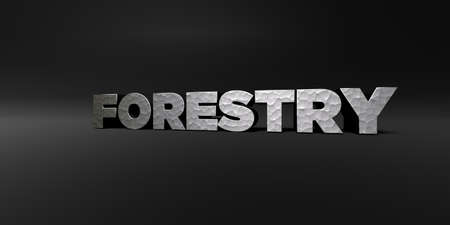 FORESTRY - hammered metal finish text on black studio - 3D rendered royalty free stock photo. This image can be used for an online website banner ad or a print postcard.