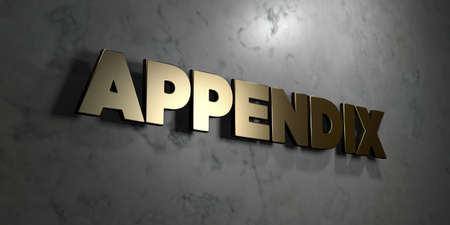 Appendix - Gold sign mounted on glossy marble wall  - 3D rendered royalty free stock illustration. This image can be used for an online website banner ad or a print postcard.