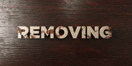 removing: Removing - grungy wooden headline on Maple  - 3D rendered royalty free stock image. This image can be used for an online website banner ad or a print postcard.