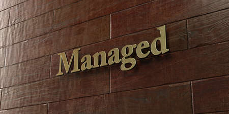 managed: Managed - Bronze plaque mounted on maple wood wall  - 3D rendered royalty free stock picture. This image can be used for an online website banner ad or a print postcard. Stock Photo