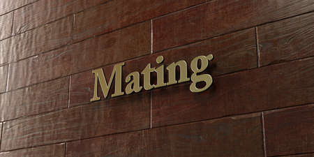 mating: Mating - Bronze plaque mounted on maple wood wall  - 3D rendered royalty free stock picture. This image can be used for an online website banner ad or a print postcard. Stock Photo