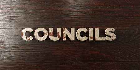 councils: Councils - grungy wooden headline on Maple  - 3D rendered royalty free stock image. This image can be used for an online website banner ad or a print postcard.