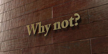 can not: Why not? - Bronze plaque mounted on maple wood wall  - 3D rendered royalty free stock picture. This image can be used for an online website banner ad or a print postcard. Stock Photo