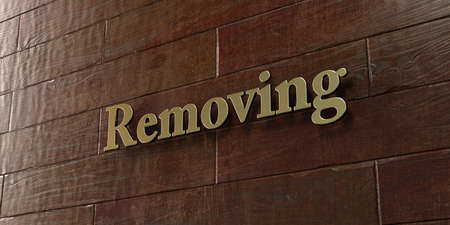 removing: Removing - Bronze plaque mounted on maple wood wall  - 3D rendered royalty free stock picture. This image can be used for an online website banner ad or a print postcard.